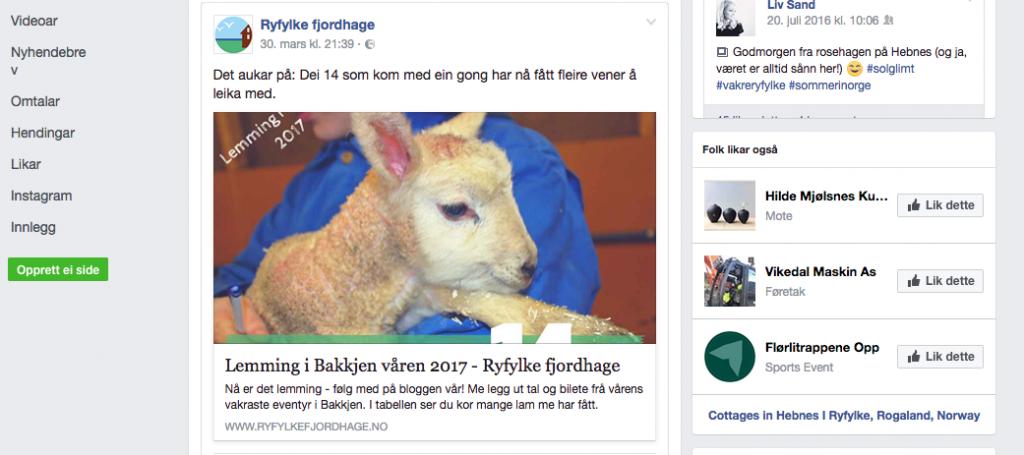 logobruk på facebook